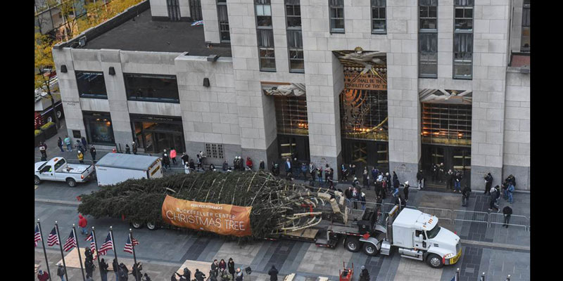 rockefeller-center-christmas-tree-arrival
