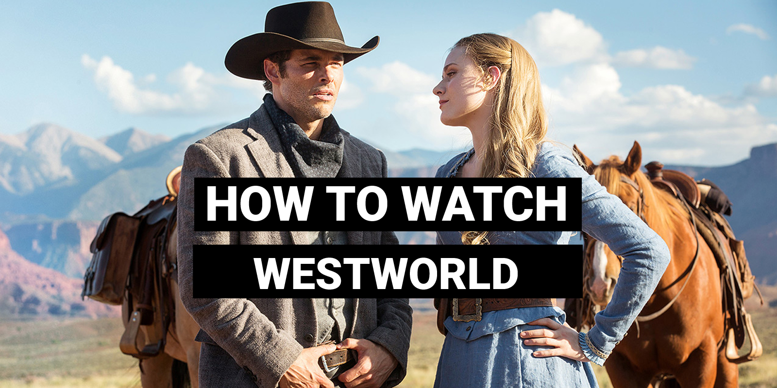 with one of the more interesting premises for a show on network television it s no surprise that westworld r has gained such a massive following